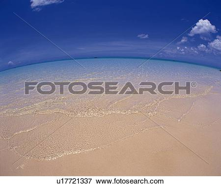 Picture of Gentle Waves Lapping at the Sandy Beach, Fish.