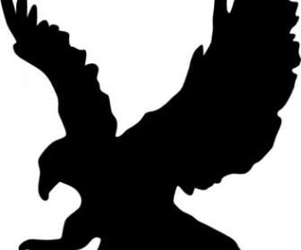 Aquila Clipart.