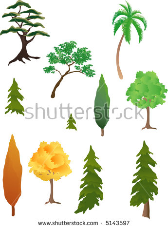 Juniper Tree Stock Photos, Royalty.
