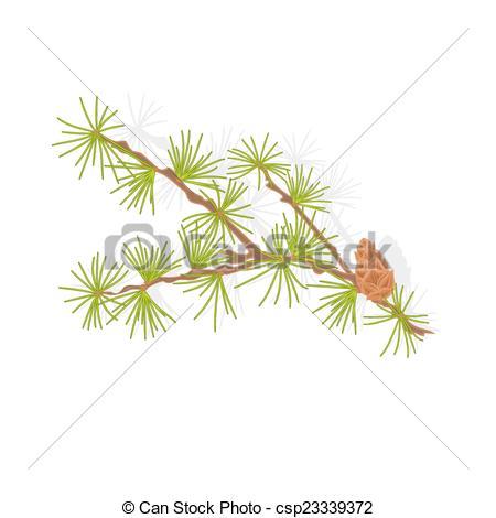Vectors Illustration of Larch tamarack branch christmas tree.