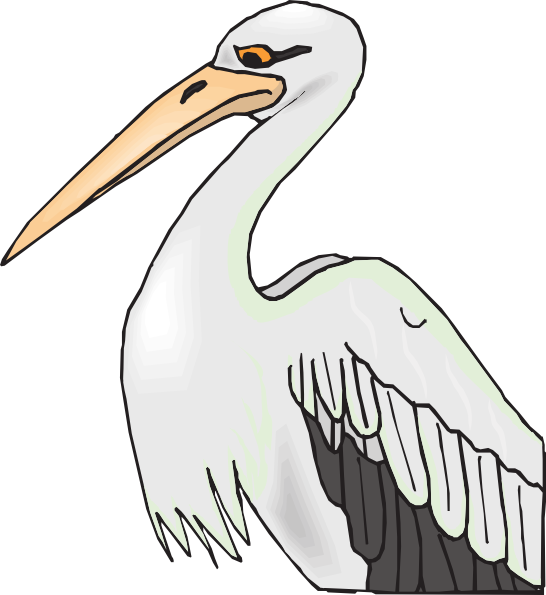 Pelican With Sharp Beak Clip Art at Clker.com.