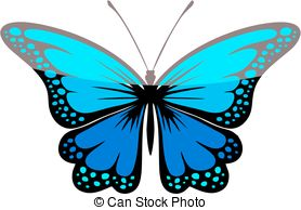 Isolated large blue butterfly Stock Illustrations. 154 Isolated.