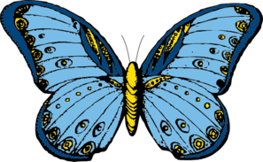 Large Blue Butterfly Clip Art at Clker.com.