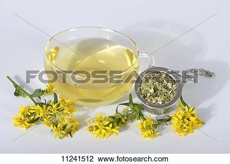 Stock Photo of Goldenrod tea in a glass cup, dried tea leaves and.