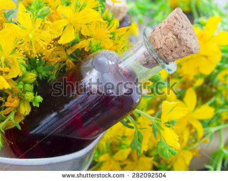 "st Johns Wort"" Stock Photos, Royalty."