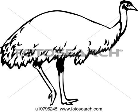 Clipart of Emu u10796245.