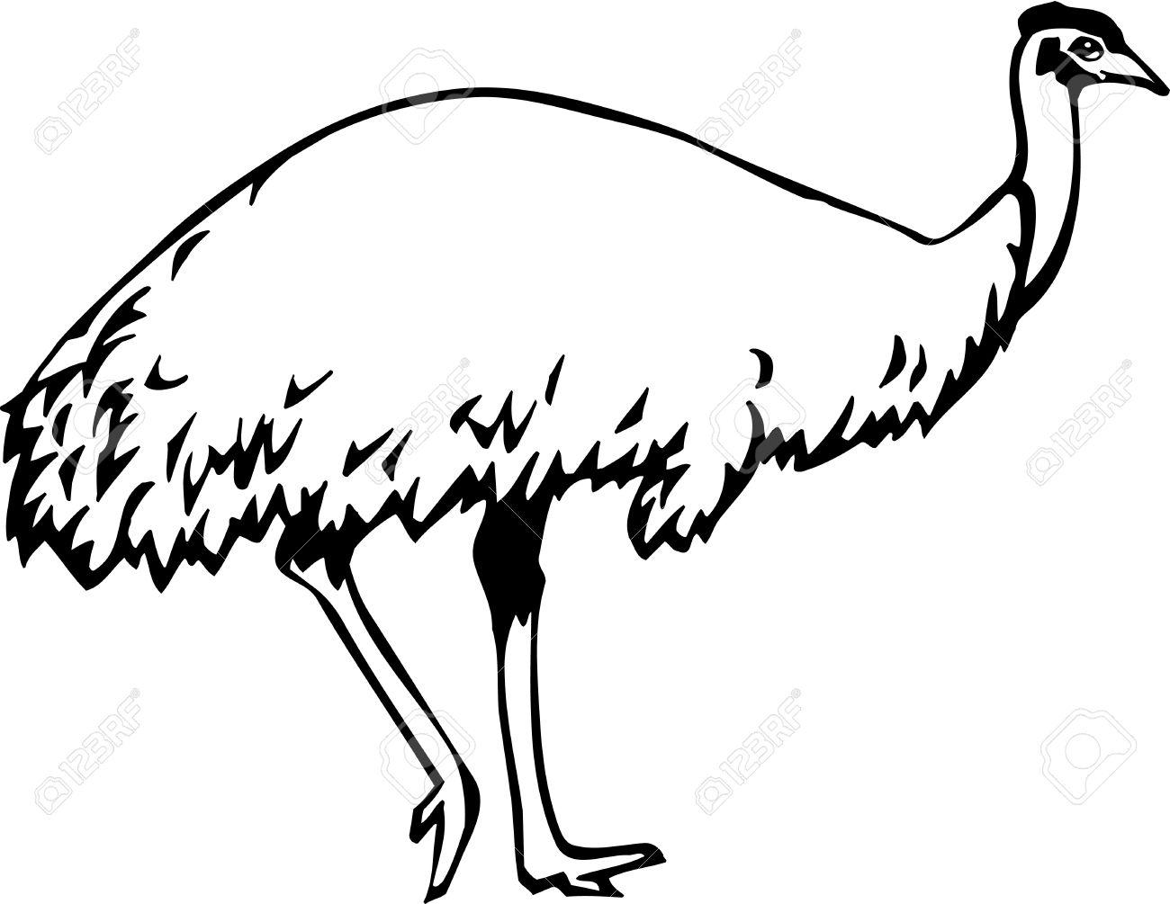 Emu clipart free.
