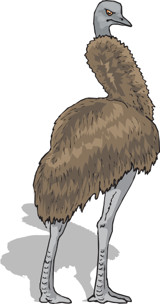 Emu Clip Art at Clker.com.
