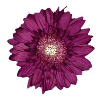 Flower Clip.