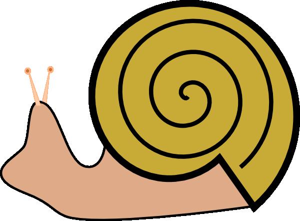 Snail 15 Clip Art at Clker.com.