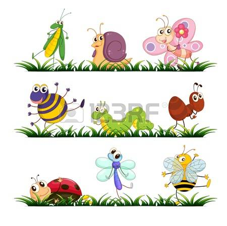 Bug On Grass Images, Stock Pictures, Royalty Free Bug On Grass.