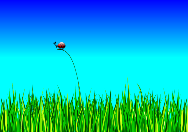 Grass with bug.