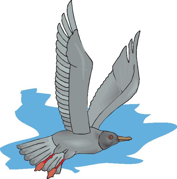 Flying Gull Clip Art at Clker.com.