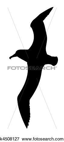 Clip Art of illustration of the sea gull k4508127.