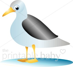 Wide Eyed Seagull Clipart.