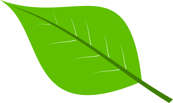 Free download Large Green Leaves Clipart for your creation.