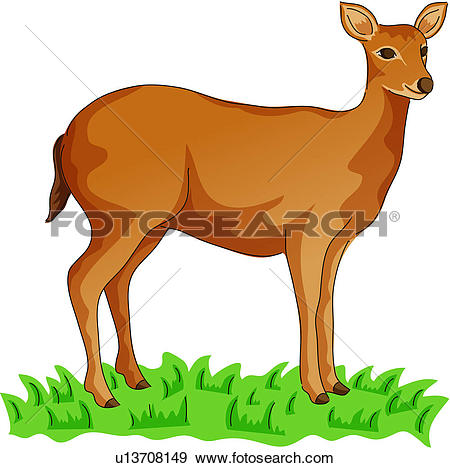 Clip Art of wild animal, vertebrate, deer, land animal, mammal.