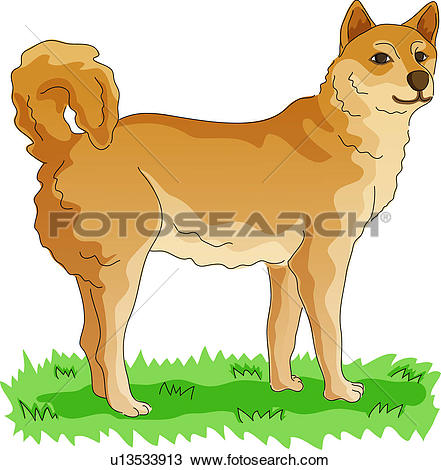 Clipart of pet animal, vertebrate, dog, land animal, mammal, dog.