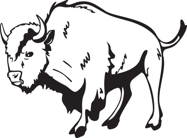 Buffalo Or Bison Large Mammal Clip Art For Custom Gifts.