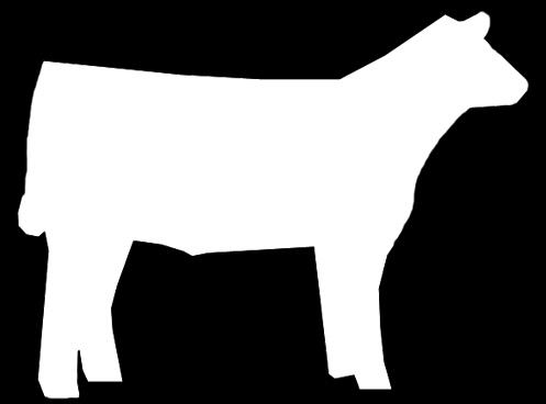 Market steer clipart.