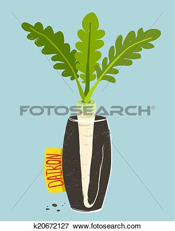 Clip Art of Growing Daikon Radish with Green Leafy Top in Vase.