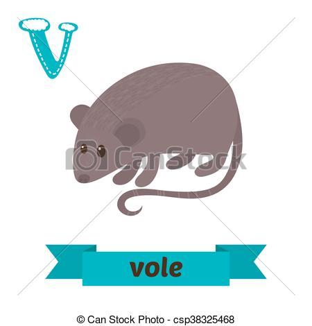 Voles Illustrations and Clip Art. 35 Voles royalty free.
