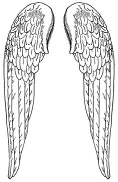 1000+ images about Tattoo Wings Flügel on Pinterest.