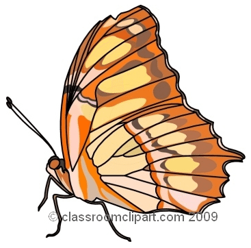 Free Butterfly Clip Art for All Your Projects.