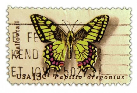 1000+ images about Printable Butterflies on Pinterest.