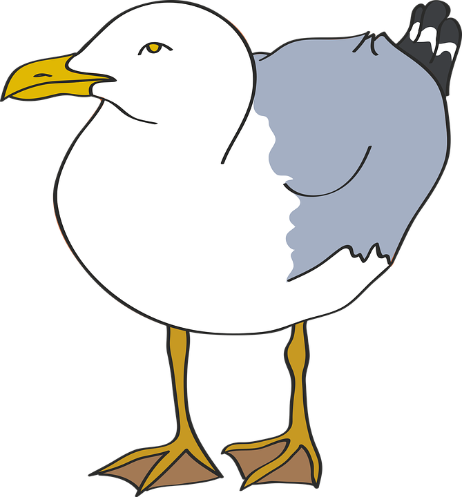 Free vector graphic: Seagull, Bird, Beach, Sea, Laridae.