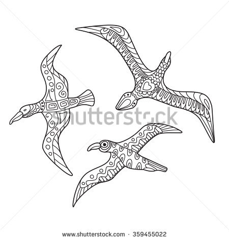Laridae Stock Vectors & Vector Clip Art.