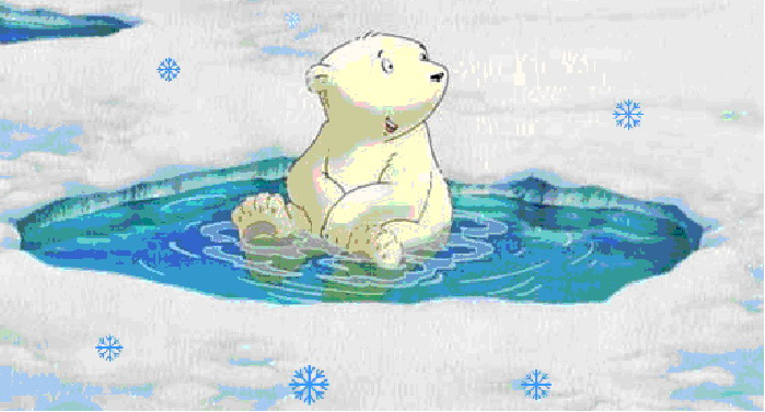 1000+ images about Polarbear on Pinterest.