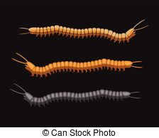 Larval Vector Clip Art Royalty Free. 88 Larval clipart vector EPS.