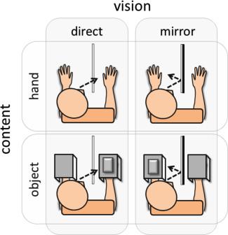 Experiment 1. In separate blocks, nociceptive laser stimuli.