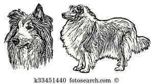 Lassie Clip Art and Illustration. 39 lassie clipart vector EPS.