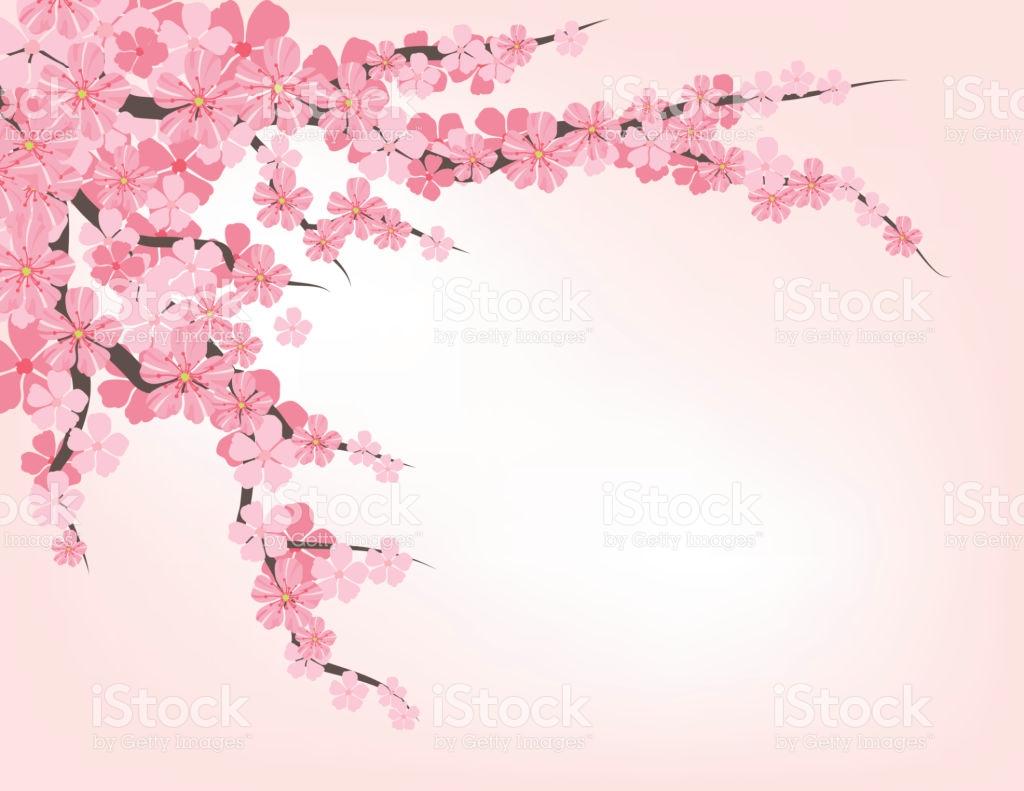 Cherry Blossom Clip Art, Vector Images & Illustrations.