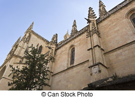 Stock Images of Elvas Cathedral Ceiling.