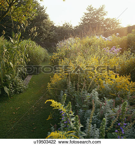 Stock Photo of Grass path and herbaceous borders in country garden.