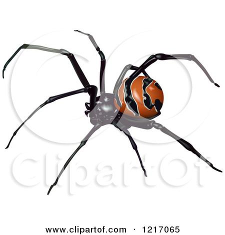 Clipart of a Latrodectus Curacaviensis Spider.