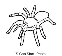 Latrodectus Stock Illustrations. 51 Latrodectus clip art images.