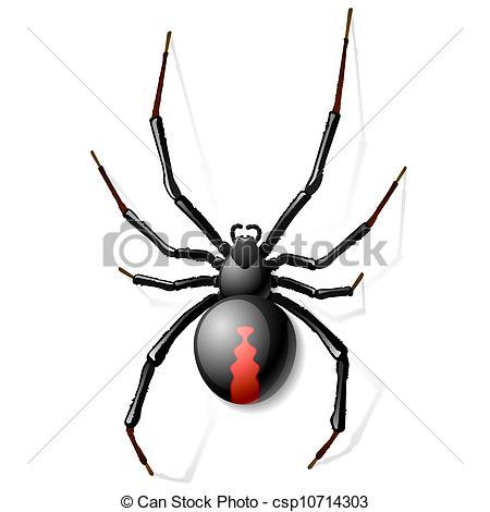Vector Clipart of Black Widow spider vector illustration.