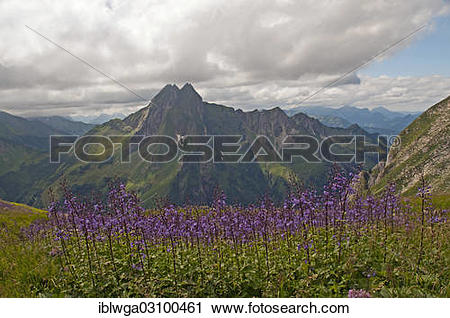 "Stock Photography of ""Hoefats Mountain, 2259m, view from."