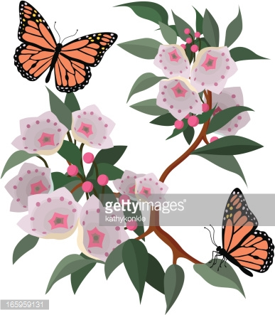Orange Blossoms And Monarch Butterflies Vector Art.