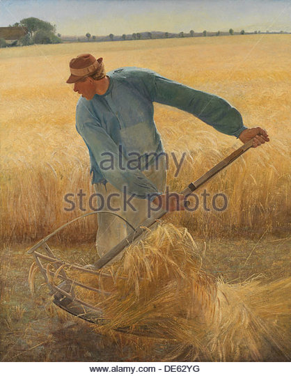 Peasants Harvest Stock Photos & Peasants Harvest Stock Images.