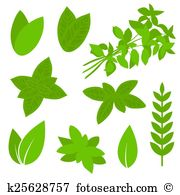 Laurus Clipart and Illustration. 42 laurus clip art vector EPS.