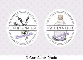 Lavandula angustifolia Clip Art Vector Graphics. 47 Lavandula.