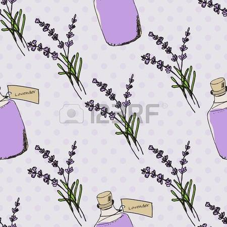 69 Angustifolia Stock Vector Illustration And Royalty Free.