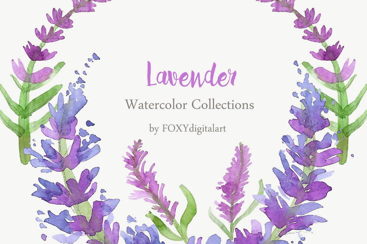 Watercolor Lavender Clipart Collection.