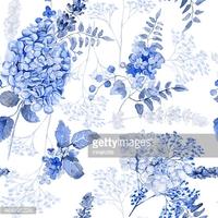 Nahtlose Aquarell Blaue Hortensie, Lavendel, stock.