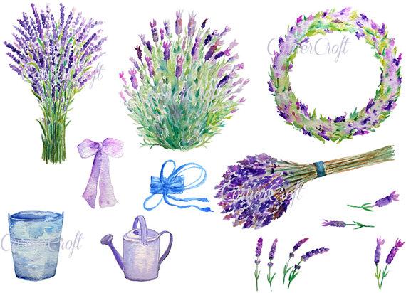 Handbemalte Aquarell Lavendel blau lila Blüten von CornerCroft.